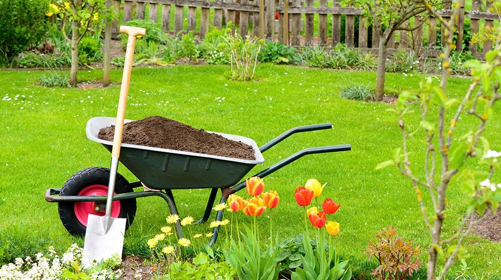 Landschaftspflege & Gartenpflege