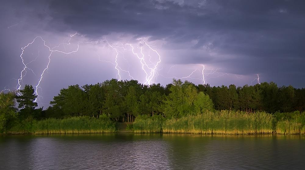 Blitzeinschlag Wald